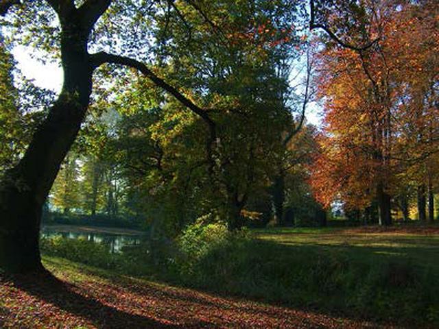 Lauenburgische Gärten
